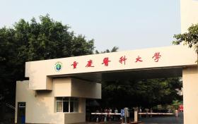 重庆医科大学招生章程-2019年普通类本科