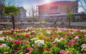 2020软科中国语言类大学排名