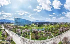 西北工业大学2020年艺术类招生简章