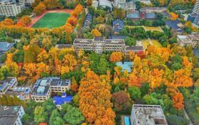 高考分数预测大学概率的网站推荐:大数据测算高考录取概率