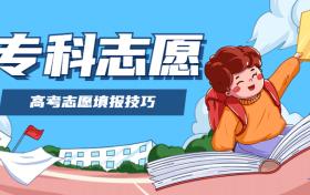 2020上海高考专科填报:上海高考专科怎样填志愿好?