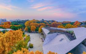 武汉大学强基计划录取分数线2020年(含招生专业、入围分数线)