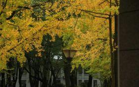 重庆邮电大学算名牌大学吗?重邮通信为什么排名那么靠前?