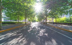 武汉大学热门专业有哪些?附武汉大学最低分专业名单(2021参考)