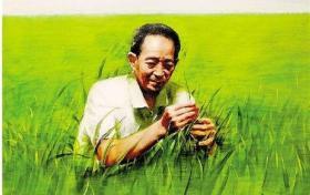 写进高考语文作文里缅怀:杂交水稻之父袁隆平、肝胆外科之父吴孟超